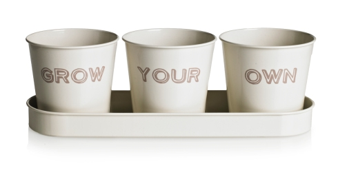 3307717 _ Grow Your Own Pots on Tray, £7
