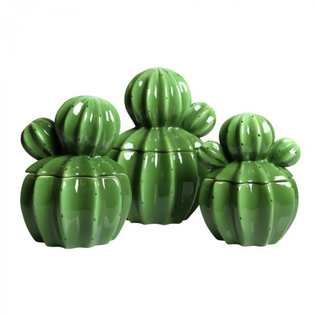 Cactus storage jars Howkapow