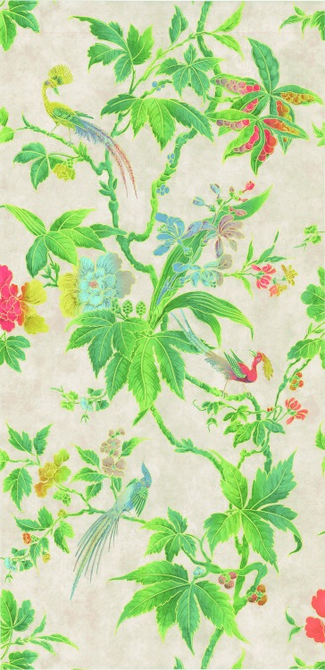 EXACT MATCH Paradise Feather wallpaper £137 per roll Little Greene